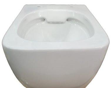 dettaglio vaso wc senza brida rimless sanitari bagno